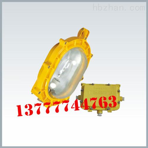 BFE8120内场防爆应急灯/防爆强光泛光灯价格