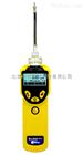 MiniRAE 3000 VOC检测仪【PGM-7320】