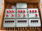 BXM(D)53防爆照明(動力)配電箱/防爆配電箱廠家報價(IIB、IIC)