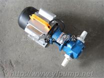微型齿轮输油泵