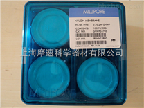 millipore GNWP04700 尼龙表面滤膜,亲水,0.22 µm,47 mm,白色,光面