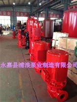 消防泵,单级立式消防泵