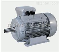优势销售NERI MOTORI电机-赫尔纳(大连)公司