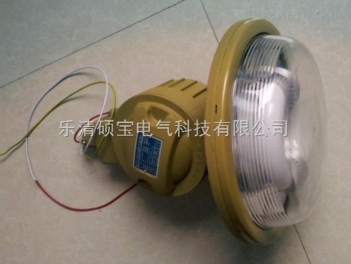 SBD1102-YQL40免维护节能防爆灯防水防尘防腐节能无极灯