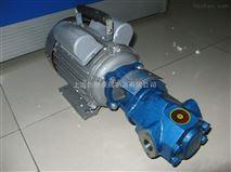 WCB型-手提式微型齿轮油泵 齿轮泵