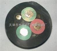 YC3*16+1*10电缆价格