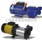 小型自吸螺杆泵
