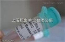 1.0 mg/mlAnti-Ox-LDL (小鼠抗人氧化低密度脂蛋白單抗)