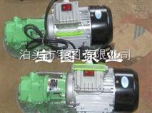 讲解微型手提式齿轮泵的保养常识--泊头宝图