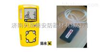 手持式,便攜式甲醇氣體檢測儀