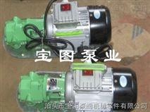 齿轮泵型号,微型手提式齿轮泵保养方法泊头宝图