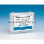 Whatman Cyclopore膜
