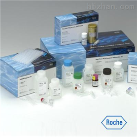 大鼠血小板生成素(TPO)ELISA試劑盒