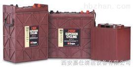 西安洗地机用TROJAN电瓶电池