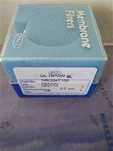 pall颇尔尼龙膜清洁度检测膜片0.2um货号NRG047100