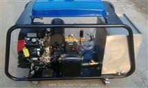 DL1320广场园林高压清洗机