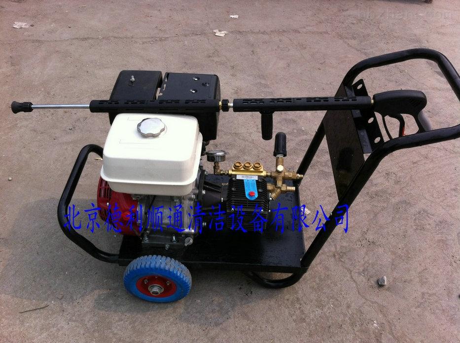 DL1320-广场园林高压清洗机