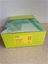Bio-Rad伯乐Hard Shell 384孔全裙边PCR反应板HSP3805