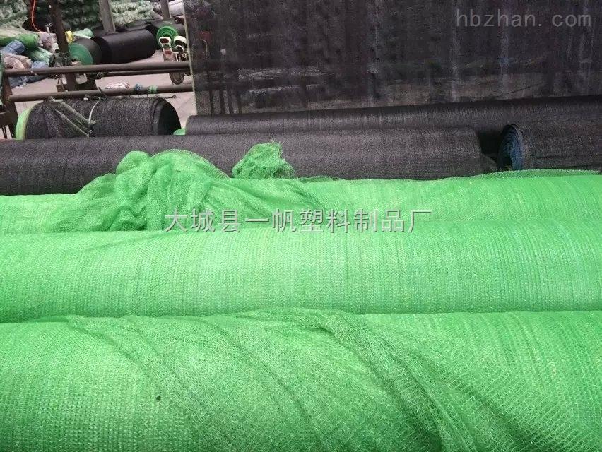 大港工地专用黑色两针防尘网