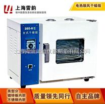 202-3A电热恒温干燥箱