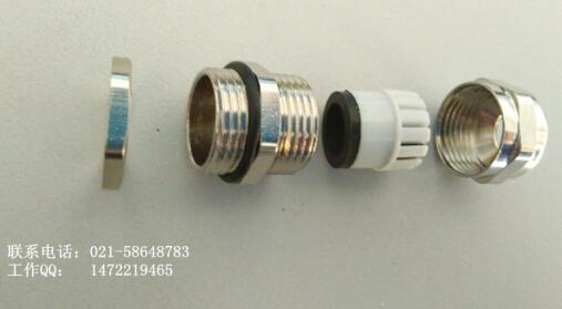 不锈钢电缆防水格兰头g1