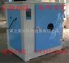 昊宇生产各种规格电热鼓风干燥箱