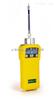 PGM-7600美国华瑞MiniRAE 2000 VOC检测仪