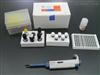 大鼠巨噬细胞来源的趋化因子(MDC/CCL22)ELISA分析试剂盒