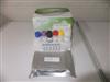 大鼠抗红细胞抗体(RBC)ELISA分析试剂盒