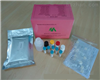 豚鼠组胺(HIS)ELISA试剂盒